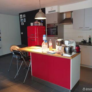 Appartement à louer à Zottegem