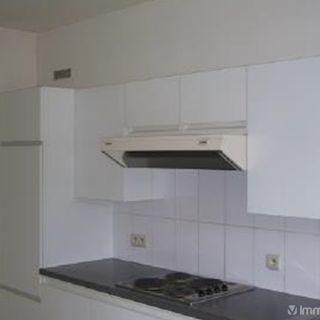 Appartement te huur tot Edingen