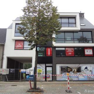 Appartement à louer à Hoogstraten