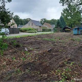 Terrain à bâtir à vendre à Sint-Job-in-'t-Goor