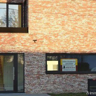 Maison à louer à Wetteren