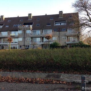 Appartement à louer à Herentals