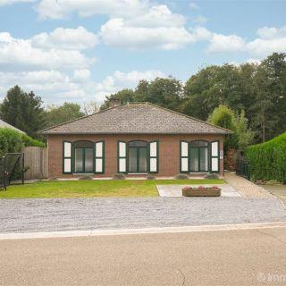 Huis te koop tot Maaseik