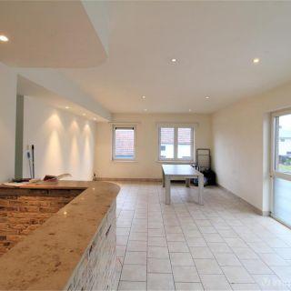 Appartement te huur tot Wetteren