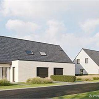Maison à vendre à Everbeek