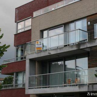 Appartement à louer à Temse