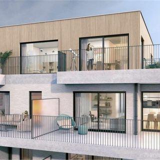 Appartement te koop tot Steendorp