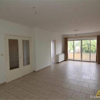 Appartement à louer à Saint-Trond