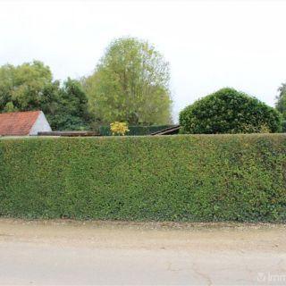 Terrain à bâtir à vendre à Wolvertem