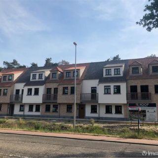 Appartement à louer à Wechelderzande