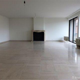 Appartement à louer à Tienen