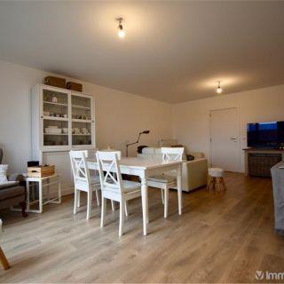 Appartement à louer à Zulte