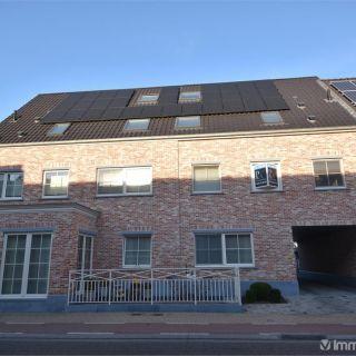 Appartement à louer à Nieuwkerken-Waas