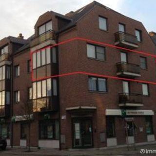 Appartement à louer à Borgloon