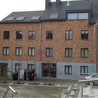 Appartement te huur tot Borgloon