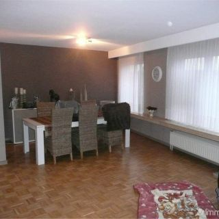 Appartement à louer à Borsbeek