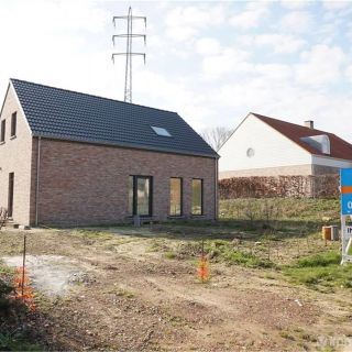 Maison à vendre à Diest