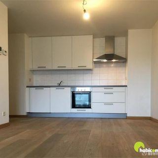 Appartement te huur tot Mortsel