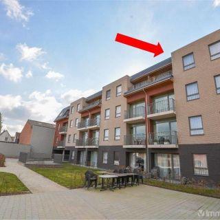 Appartement te koop tot Wevelgem