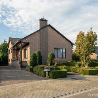 Maison à vendre à Olen