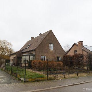 Villa à vendre à Ninove