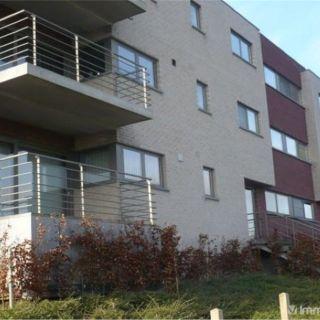 Appartement à louer à Denderleeuw