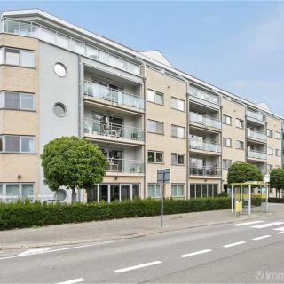 Appartement te koop tot Willebroek
