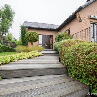 Maison à vendre à Lierde