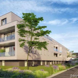 Appartement à vendre à Melsele