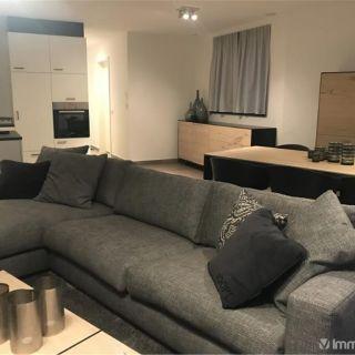 Appartement à louer à Horebeke