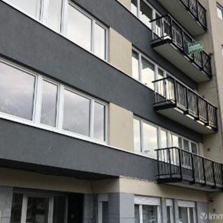 Appartement à louer à Alost
