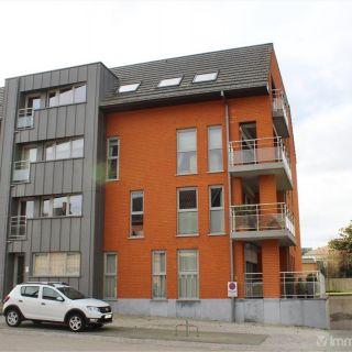 Appartement à louer à Schellebelle