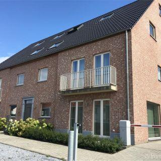 Appartement te huur tot Sint-Pauwels