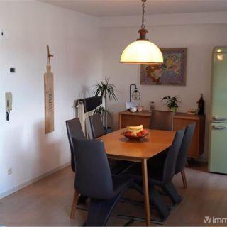 Appartement à louer à Neerpelt