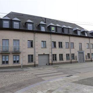 Appartement à louer à Lievegem