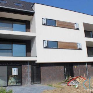 Appartement à louer à Zeveneken