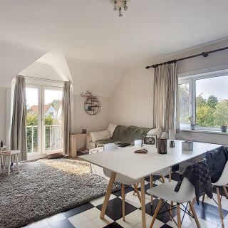 Appartement à louer à Coxyde