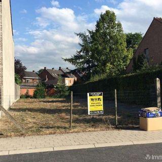 Terrain à bâtir à vendre à Rijkevorsel
