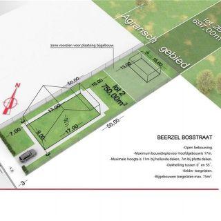 Terrain à bâtir à vendre à Beerzel
