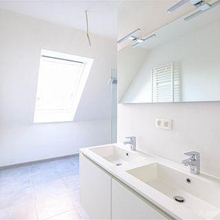 Appartement à louer à Lokeren