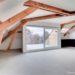 Appartement te huur tot Sint-Niklaas