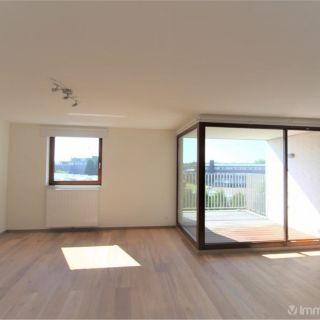 Appartement à louer à Bilzen