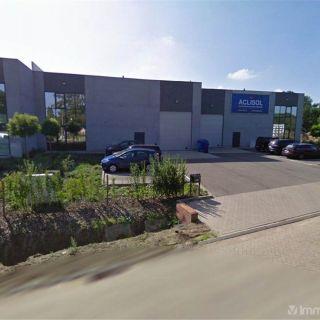 Bureaux à louer à Meerhout