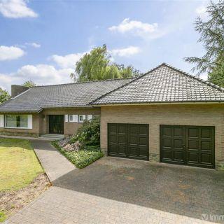 Maison à vendre à Kasterlee