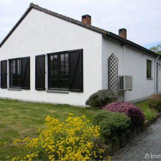 Maison à louer à Wierde
