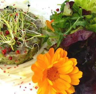 AlimenVie, une cuisine vivante au service de votre santé