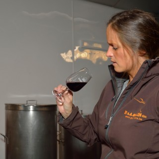 Des alternatives pour un vin zéro déchet