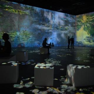 Plongez dans les toiles de Claude Monet