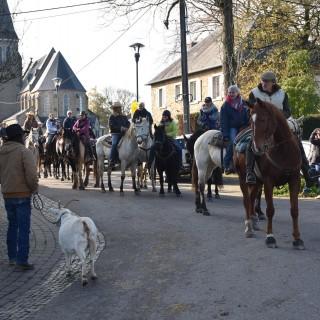 Près de cent chevaux, chiens et une chèvre à la 6e St-Hubert de Sovet