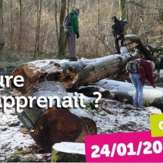 Conférence: et si la nature nous apprenait?